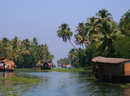 South India: Explore Kerala - Visit Vembanad Wetlands Conservation Programme