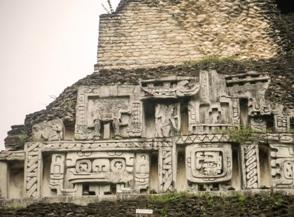 Mayan Discovery