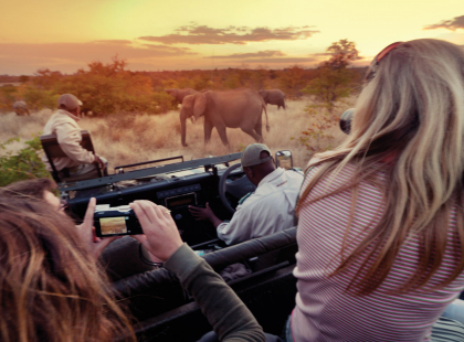 Mozambique, Kruger & Swazi Discoverer - Kruger National Park Open Vehicle Wildlife Safari Drive - Full day