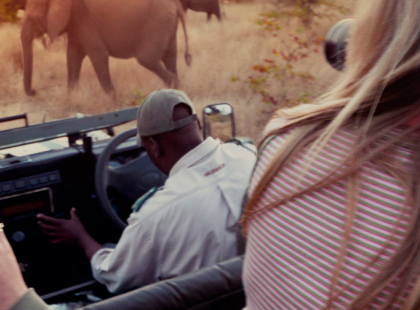 Serengeti, Falls & Cape Town Adventure