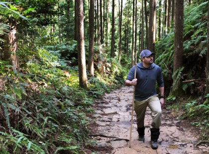 Enjoy three days on the sacred Kumano Kodo Pilgrimage trail, hiking ancient paths through cedar and cypress forests, visiting impressive shrines and quaint mountain villages.