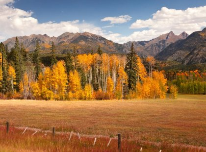 From Durango, we take a hike in beautiful San Juan National Forest through dense woodlands of spruce, fir and aspen.