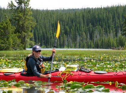 Novice and experienced kayakers alike get a thrill from paddling Yellowstone's wilderness lakes in the camaraderie of a small group.