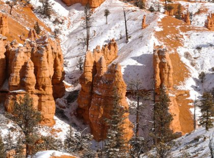 Usher in the New Year at beautiful Zion & Bryce Canyon National Parks on this special hiking and snowshoeing holiday trip led by top guides.