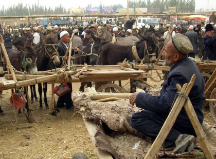 Local animal market in Kashgar