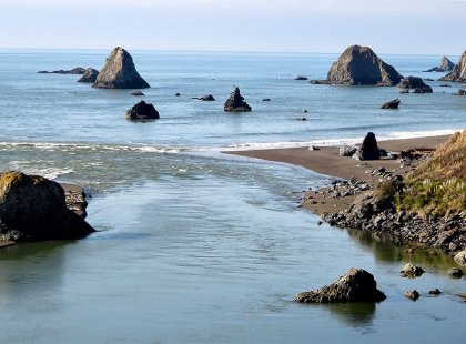 Take in stunning vistas along the Pacific Coast as we head north to the Russian River and wine country.