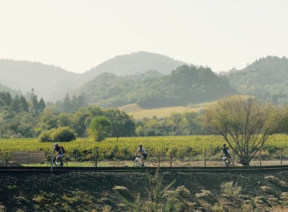 Cycle in the Dry Creek and Alexander valleys with views of the Sonoma and Mayacamas mountains.